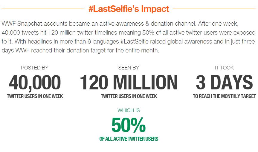 LastSelfie Campaign Impact