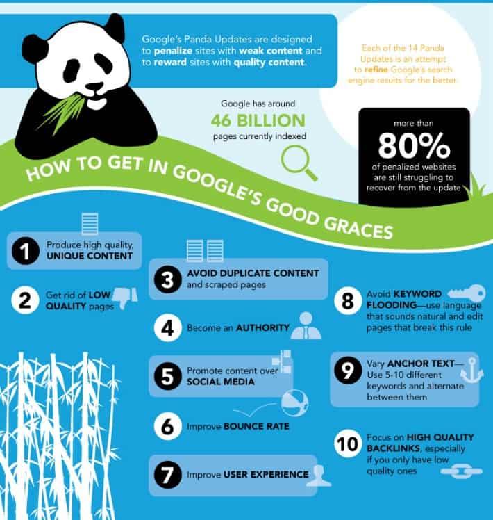 Panda infographic